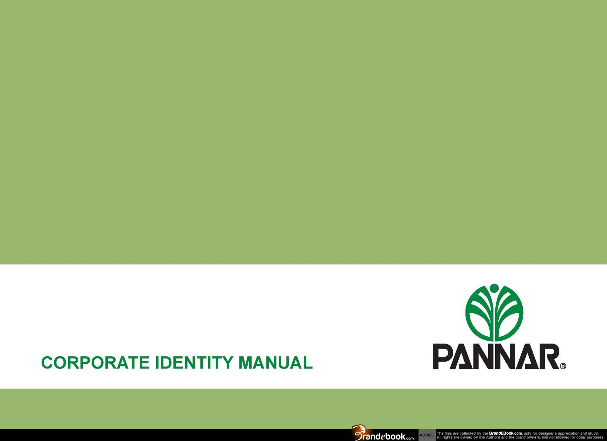 corporate brand identity guidelines pdf