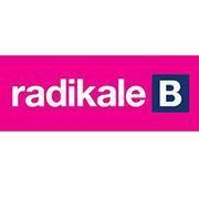 BrandEBook.com-Radikale_Venstre_Identity_Guidelines_2010-0001