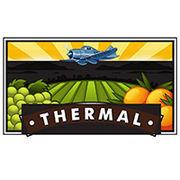 BrandEBook.com-Thermal_logo_style_guide-0001