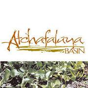 BrandEBook_com_atchafalaya_basin_graphic_standards_01