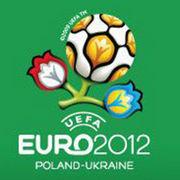 BrandEBook_com_uefa_euro_2012_and_castrol_brand_guidelines_01