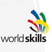 BrandEBook_com_world_skills_visual_identity_guidelines_-1