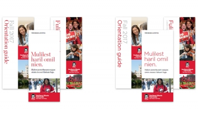 Northern Illinois University Communication Standards for Institutional Brand Identity